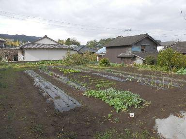 指宿市東方室屋【売地】平坦宅地115坪300万円