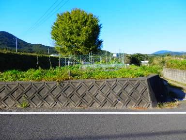 鹿児島県枕崎市木場町【売地】高台の雛段・宅地・山林・畑1,243坪800万円